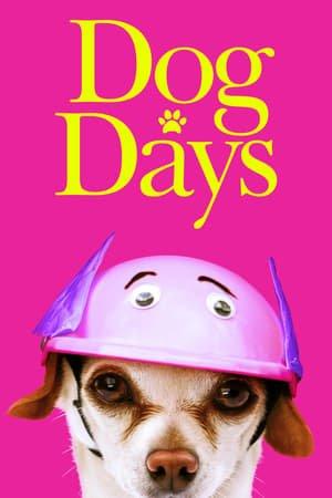 ძაღლების დღე (ქართულად) / dzaglebis dge (qartulad) / Dog Days