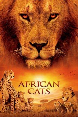 აფრიკული კატები (ქართულად) / afrikuli katebi (qartulad) / African Cats