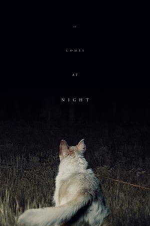 ის მოდის ღამით (ქართულად) / is modis gamit (qartulad) / It Comes at Night