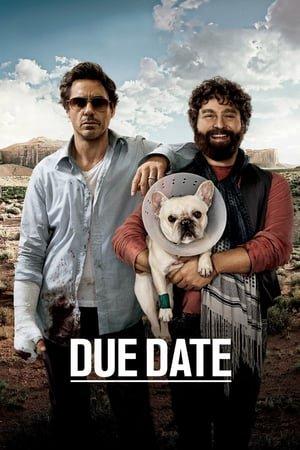 დანიშნული დრო / Due Date