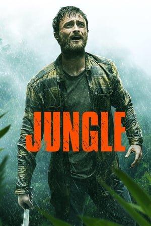 ჯუნგლები (ქართულად) / junglebi (qartulad) / Jungle
