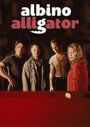 ალბინო ალიგატორი (ქართულად) / albino aligatori (qartulad) / Albino Alligator