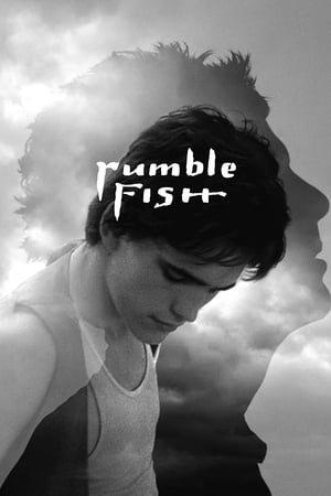 მებრძოლი თევზი (ქართულად) / mebrdzoli tevzi (qartulad) / Rumble Fish