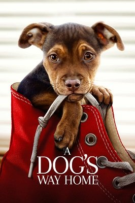 ძაღლის გზა შინისაკენ (ქართულად) / dzaglis gza shinisaken (qartulad) / A Dog's Way Home