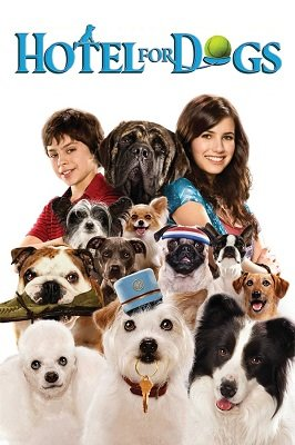 ძაღლების სასტუმრო (ქართულად) / dzaglebis sastumro (qartulad) / Hotel for Dogs