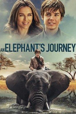 სპილოს თავგადასავალი (ქართულად) / spilos tavgadasavali (qartulad) / An Elephant's Journey