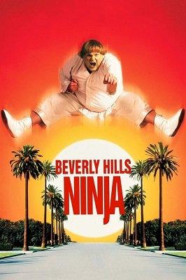 ნინძა ბევერლი ჰილზიდან (ქართულად) / nindza beverli hilzidan (qartulad) / Beverly Hills Ninja