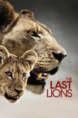 უკანასკნელი ლომები (ქართულად) / ukanaskneli lomebi (qartulad) / The Last Lions