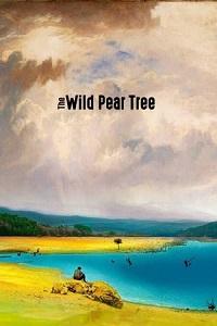 ველური მსხლის ხე (ქართულად) / veluri msxlis xe (qartulad) / The Wild Pear Tree