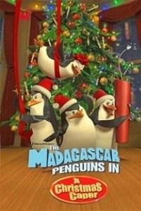მადაგასკარის პინგვინები: ძარცვა შობას (ქართულად) / madagaskaris pingvinebi: dzarcva shobas (qartulad) / The Madagascar Penguins in a Christmas Caper
