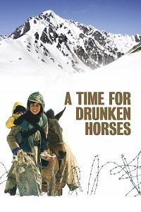 მთვრალი ცხენების დრო (ქართულად) / mtvrali cxenebis dro (qartulad) / A Time for Drunken Horses