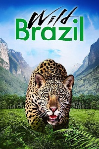 ველური ბრაზილია (ქართულად) / veluri brazilia (qartulad) / Wild Brazil