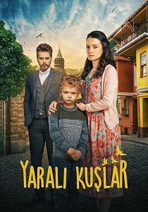 მოგონებების ზარდახშა (დაჭრილი ჩიტები) - თურქული სერიალი (ქართულად) / mogonebebis zardaxsha (dachrili chitebi) Turquli Seriali (qartulad) / Yarali Kuslar Kartulad Turkuli Seriali
