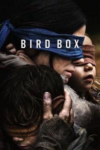 ჩიტის ყუთი (ქართულად) / chitis yuti (qartulad) / Bird Box