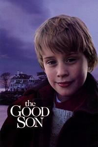 კარგი შვილი (ქართულად) / kargi shvili (qartulad) / The Good Son