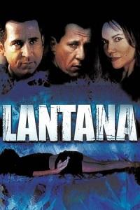 ლანტანა (ქართულად) / lantana (qartulad) / Lantana