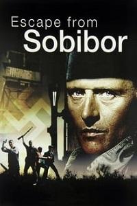 გაქცევა სობიბორიდან (ქართულად) / gaqceva sobiboridan (qartulad) / Escape from Sobibor