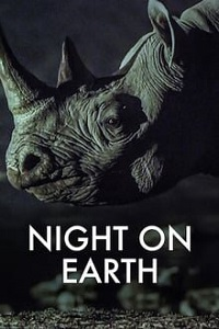 ღამე დედამიწაზე (ქართულად) / game dedamiwaze (qartulad) / Night on Earth