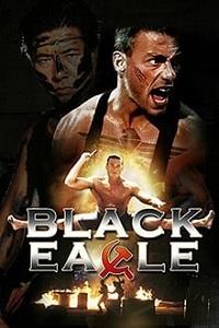 შავი არწივი (ქართულად) / shavi arwivi (qartulad) / Black Eagle