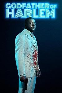 ჰარლემის ნათლია (ქართულად) / harlenis natlia (qartulad) / Godfather of Harlem