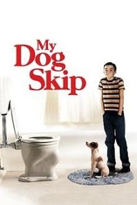 ჩემი ძაღლი სკიპი (ქართულად) / chemi dzagli skipi (qartulad) / My Dog Skip