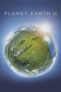 პლანეტა დედამიწა II (ქართულად) / planeta dedamiwa II (qartulad) / Planet Earth II