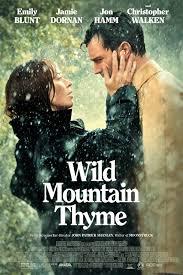 ველური ქონდარა (ქართულად) / veluri qondara (qartulad) / Wild Mountain Thyme