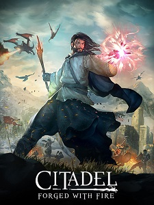 Citadel: Forged with Fire | CODEX