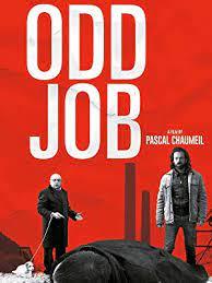 უცნაური სამუშაო (ქართულად) / ucnauri samushao (qartulad) / Odd Job