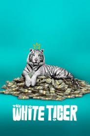 თეთრი ვეფხვი (ქართულად) / tetri vefxvi (qartulad) / THE WHITE TIGER