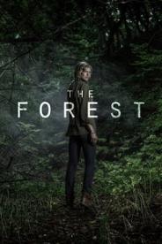 ტყე (ქართულად) / tye (qartulad) / The Forest