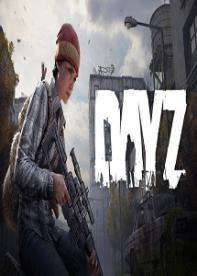 DayZ Standalone   Multiplayer