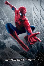 ადამიანი-ობობა (ქართულად) / spaider-men (qartulad) / Spider-Man