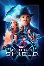 შილდის აგენტები (ქართულად) / shildis agentebi (qartulad) / Marvel's Agents of S.H.I.E.L.D.