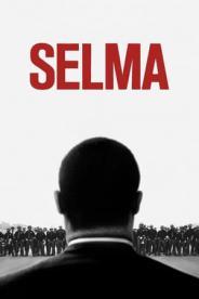 სელმა (ქართულად) / selma (qartulad) / Selma