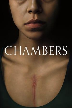 პალატები (ქართულად) / palatebi (qartulad) / Chambers